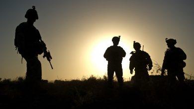 Photo of El Pentágono descarta los informes sobre el abandono de los perros de servicio por parte del ejército estadounidense en Afganistán